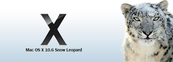 snow-leopard-retail2