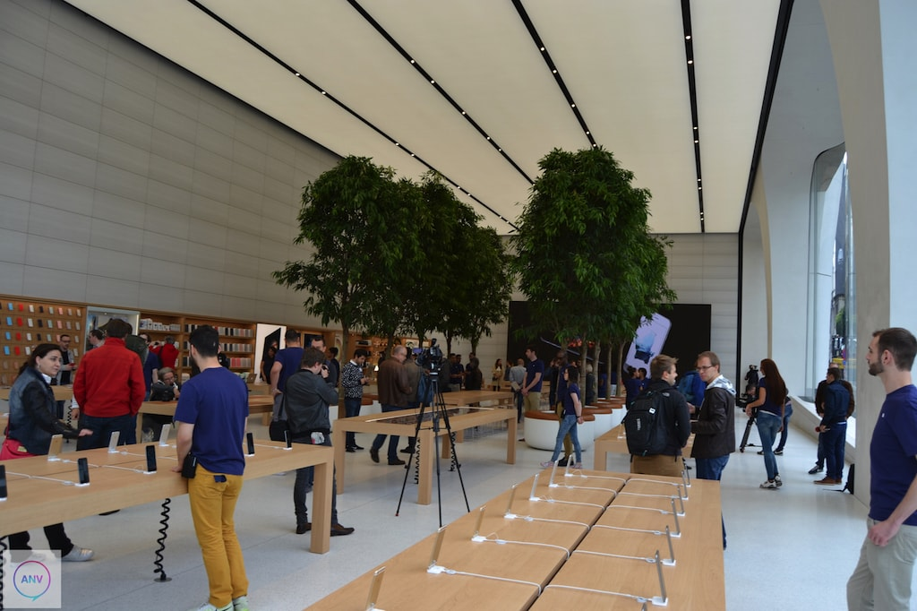 Apple Store Brüssel Bäume